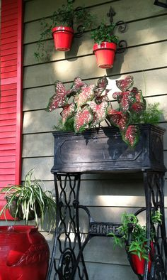 Placed black planter box on top of old sewing machine base.