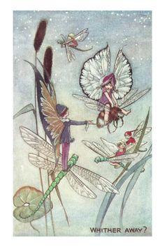 Fairies riding dragon flies *~❤•❦•:*´`*:•❦•❤~*