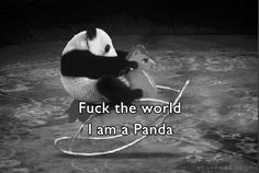 fuck the world I am a panda