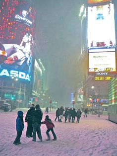 New York, Snow Storm Dec 2010 by alfredob