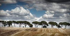 Alberi e nuvole by Rocco Giove on 500px