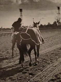 Secretariat leaving the racetrack for the final time.