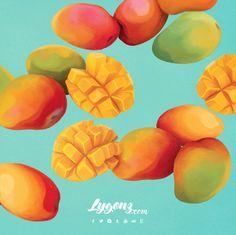mangos mangoes digital art illustration tropical summer fruit New Fruit, Fruit Art, Summer Fruit, Fruit Illustration, Food Illustrations, Mango Fruta, Fruits Basket Quotes, Mango Logo, Fruit Salad With Marshmallows