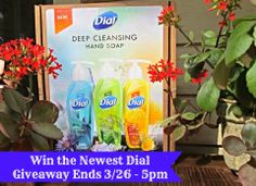 NEW Dial Deep Cleansing Hand Soap Giveaway