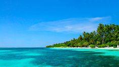 Relaxing Pan Flute Music - Calming Sea TERAPİ..
