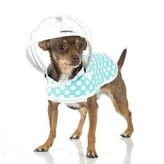 Mint + White Polka Dots Puddle Jumper Doggy Raincoat #yourdogwilldigit