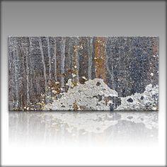 VnArtist / LEINWAND KUNSTDRUCK XXL Bilder Modern Natur 4860 in Möbel &…