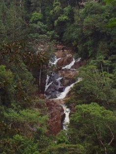 chagres national park - Google Search