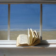Window With Book In The Sun By Robin Stemp. Blank Art Cards By Green Pebble.