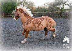 The Art of Horse Clipping http://www.horsechannel.com/horse-news/2016/01/the-art-of-horse-clipping-trending.aspx