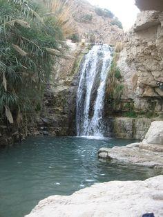 Ein-Gedi, Israel