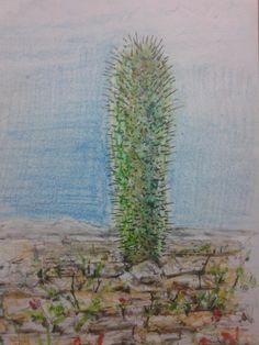 CACTU: lapis de cor, lápis cera escolar, hidrográfica e carvão sobre papel. 210 x 297mm.  CACTUS:Color Pencils,  school chalk, Marker pen, Charcoal on paper.  210 x 297mm.
