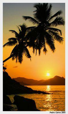 Anse Severe, Seychelles, Africa  Copyright: Ben Broughton