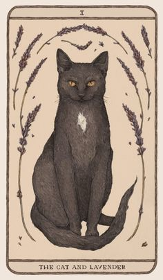 The Cat and Lavender another card for Woodland Wardens my flora and fauna themed oracle deck! My show at Gallery 205 in Columbia TN opens Friday the and the original graphite drawings plus large prints of the first few cards will be on. Art And Illustration, Cat Illustrations, Woodland Illustration, Arte Fashion, Flora Und Fauna, Fox Print, Cat Art Print, Graphite Drawings, Framed Art Prints