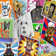 Color Your Imagination with @furrypawpics www.furrypawpics.com #furrypaw #furrypawlife #pawlife