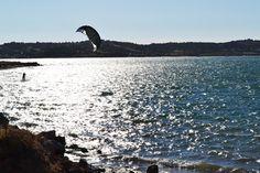 Life is more fun if the wind carry you A vida é mais divertida se o vento te levar