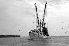 Shrimpboats in Rockville, Shrimping, Black & White, Bohicket River, Wadmalaw Island, Seabrook Island, Johns Island  www.barndoorstudiosc.com