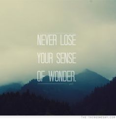 Never lose your sense of wonder Because then u grow old & miserable.