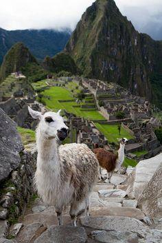 Wanderlust and My Travel Bucket List | The English Room