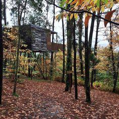 Disfrutando de las cabañas do Barranco en Serra de Outes!!!. Es un placer pasear por el bosque en otoño y tener unas vistas maravillosas.  Enamorada del #glamping #entreamigas