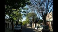 Desde Villa Urquiza, un barrio de tradicionales veredas anchas y copiosa arboleda, lo clásico, lo nuevo en constante evolución.  Están invitados. Saludos cordiales, SILVESTRI PROPIEDADES