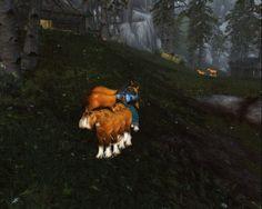 I also found an old screenshot #worldofwarcraft #blizzard #Hearthstone #wow #Warcraft #BlizzardCS #gaming