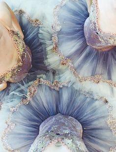 #ballet #dance #tutus