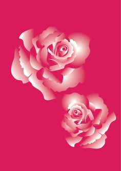 Michelle Cahill: Roses @ www.chinadahlia-arts.com