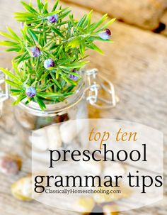 Starting preschool grammar may seem extreme, but it lays a wonderful foundation for future studies.
