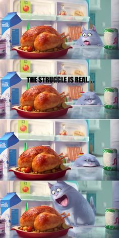 From The Secret Life of Pets (coming 2016)