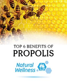 Bee propolis has been serving honey bees and humans for centuries. While the honeybees use it to keep their hives whole and safe, humans use it both internally and externally for medicinal purposes. Wellness Tips, Health And Wellness, Types Of Concrete, Bee Propolis, Bees, Natural Remedies, Dark Brown, Benefit, Medicine