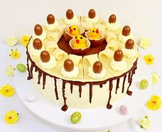 Hazelnut & Chocolate Torte - a delicious cake that I decorated with eggs and chicks for Easter! Find the recipe at http://lusciouscakesandbakes.com/recipe/hazelnut-chocolate-torte