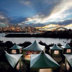 Camping at Sydney Zoo!
