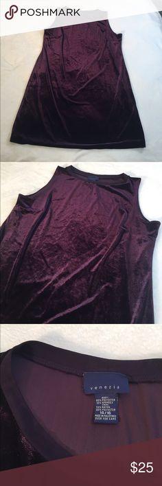 Dark Plum Purple Velvet Dress Beautiful Dark Plum purple velvet dress. EXCELLENT condition. Size 14/16 Large. Sleeveless, short dress. Perfect for a fun night out or an elegant dinner when paired with jewelry  Venezia Dresses Midi