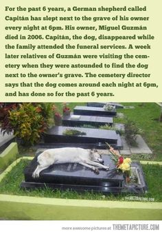 A touching story, that's absolutely true! > read the story!! >> >
