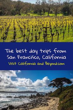 The best day trips from San Francisco, California - cool road trips along the coastline, wine country to the foot hills and Sierra Mountains from short drives to longer getaway trips. These California road trips will inspire you to visit these scenic spots just outside of the San Francisco Bay Area Best States To Visit, Usa Places To Visit, Visit Usa, California Destinations, Road Trip Destinations, California Travel, Northern California, Usa Travel Guide, Travel Usa