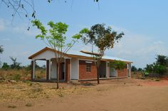 Newest Tree Additions to the Nandumbo Health Centre #Malawi #HELPchildren #plantlife #VolunteerWork