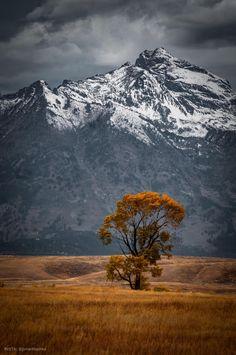 Fall in the Grand Teton Mountains : EarthPorn Beautiful World, Beautiful Places, Beautiful Scenery, Teton Mountains, Mountain Landscape, Nature Photography, Travel Photography, Photography Tips, Digital Photography