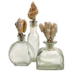 Cute Shell Bottles. I could imagine making these by glueing the pointy ends of the shells onto a cork. Add something that smells good, and you're set with a home made gift. Very cool!