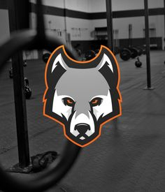 Sport Logos Vol 1 on Behance Lobo Tribal, Hockey Logos, Sports Logos, Cool Symbols, Logo Basketball, Wolf T Shirt, Eagle Logo, Dog Vector, Marvel