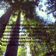 john muir quotes | John Muir Quote 3 | Don't Fence Me In.