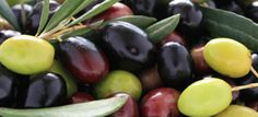 Fresh juicy olives, used with care in our label.m Honey&Oats hair mask from TONI&GUY! Olives, Mediterranean Pizza, Great Recipes, Healthy Recipes, Olive Skin, Olive Tree, Fruit Trees, Wine Tasting, Health And Wellness