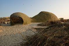 Sandworm(2012) /Marco Casagrande | MdA · MADERA DE ARQUITECTO