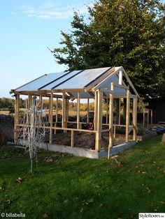 trädgård,växthus,gamla fönster,gör det själv,diy