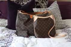 My LV Collection: Louis Vuitton Delightful MM, Odeon PM, and Insolite Coin Purse.