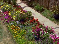 Top 100 gardening Idea