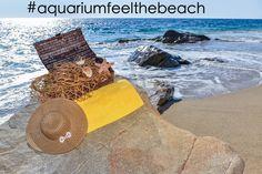 Siga-nos nas redes sociais, através da hashtag #aquariumfeelthebeach e saiba todas as novidades! #aquariumfeelthebeach #facebook #instagram #pinterest #twitter #google+