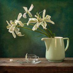 #still #life #photography • photo: ...   photographer: Jolanta Brigere   WWW.PHOTODOM.COM