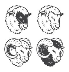 4 sheeps and rams heads vector by IvanMogilevchik on VectorStock®