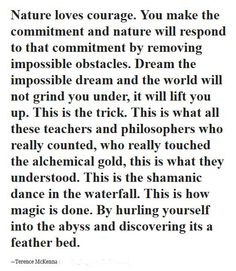 This is how magic is done. By hurling yourself into the abyss and discovering it's a feather bed. — Terence McKenna ..*